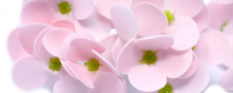 Fleurs de savons jacinthes roses