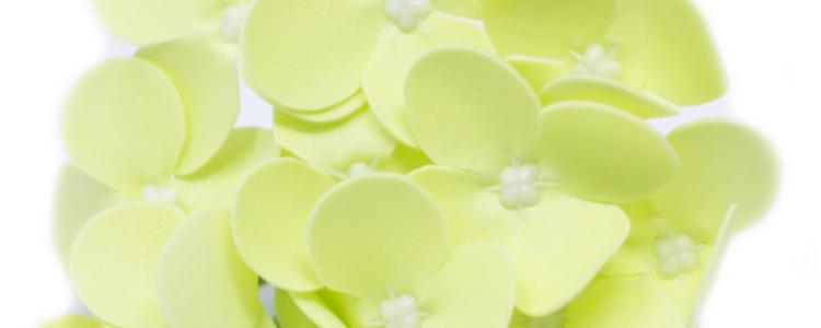 Fleurs de savon jacinthes vert clair