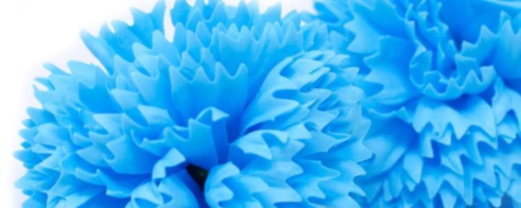 Fleurs de savon œillets bleu ciel