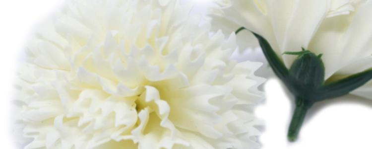 Fleurs de savon œillets crème