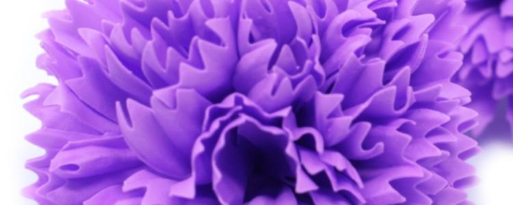 Fleurs de savon œillets violets