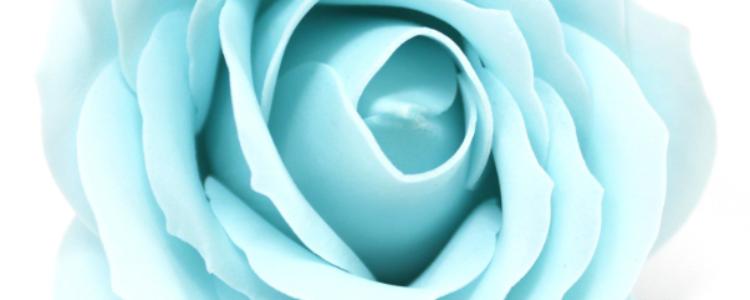 Fleurs de savon roses larges bleu layette