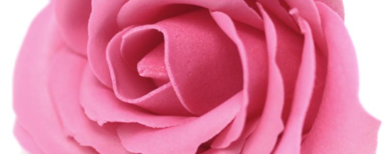 Fleurs de savon roses larges roses