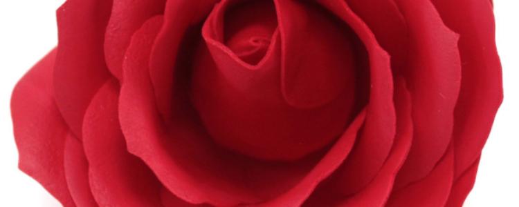 Fleurs de savon roses larges rouges