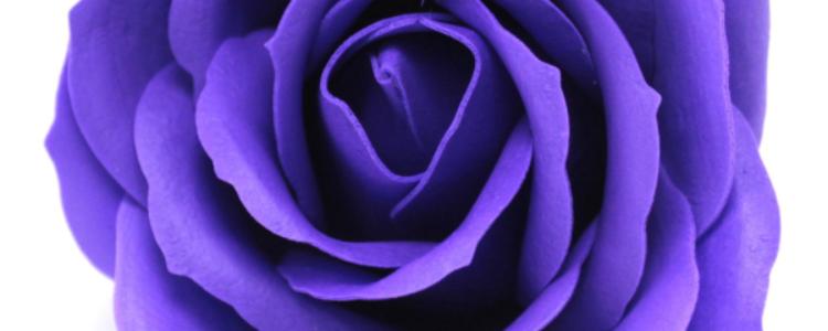 Fleurs de savon roses larges violettes