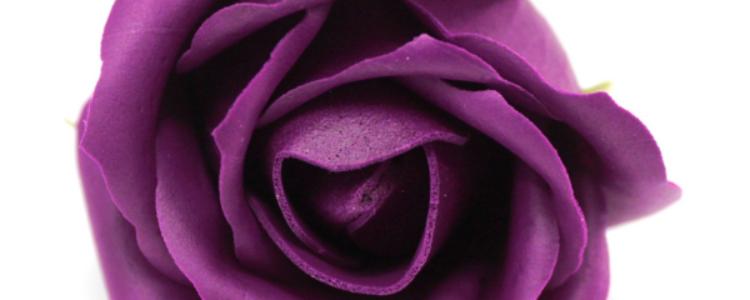 Fleurs de savon roses médiums aubergines