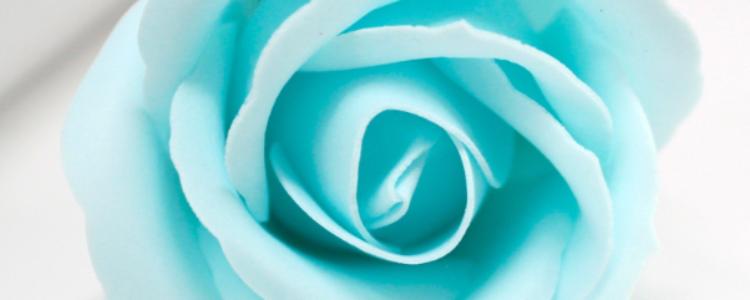 Fleurs de savon roses médiums bleu layette