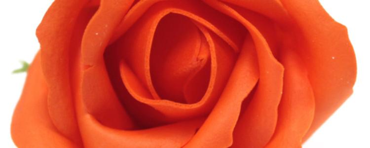 Fleurs de savon roses médiums orange foncés