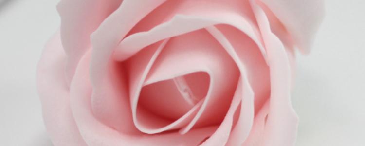 Fleurs de savon roses médiums dragées