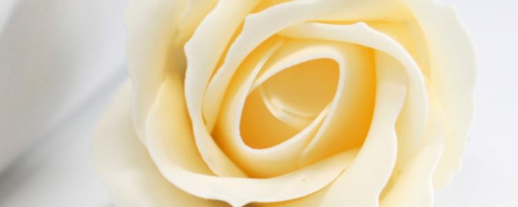 Fleurs de savon roses médiums ivoire