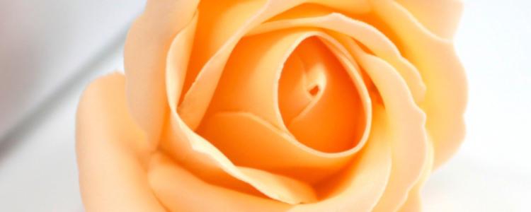 Fleurs de savon roses médiums pêche