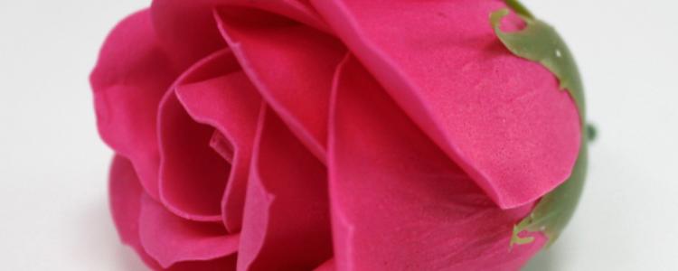 Fleurs de savon roses médiums roses vifs