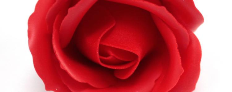 Fleurs de savon roses médiums rouges