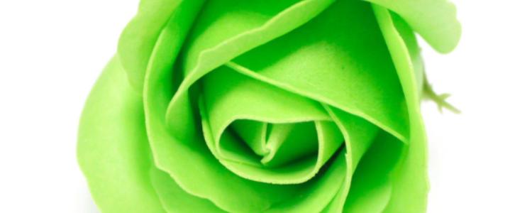 Fleurs de savon roses médiums vertes