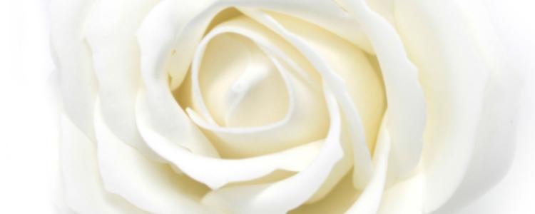 Fleurs de savon roses larges blanches