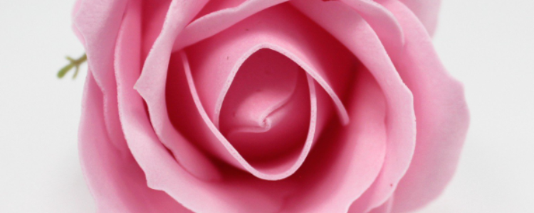 Fleurs de savon roses médiums roses